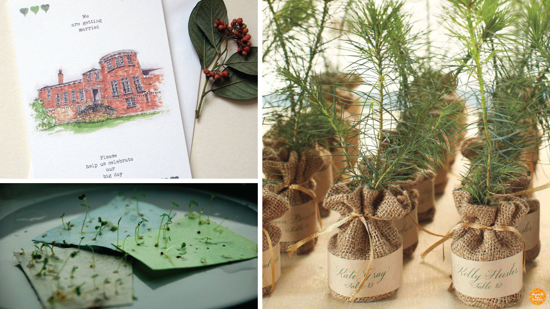 Eco-friendly invites for the environment conscious couple